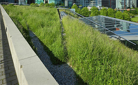 Commercial green roofing installation